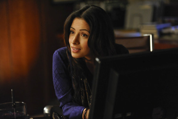 Sarah Shahi in Fairly Legal