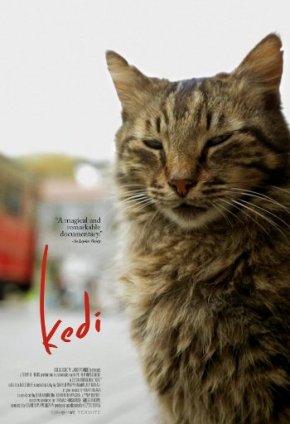 Kedi (A PopEntertainment.com MovieReview)