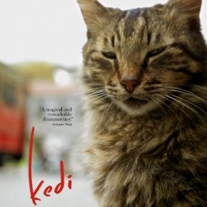 Kedi (A PopEntertainment.com Movie Review)
