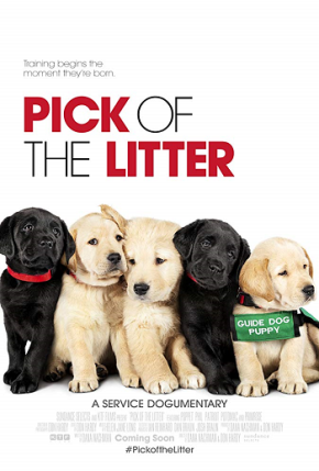 Pick of the Litter (A PopEntertainment.com MovieReview)