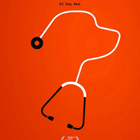 The Dog Doc (A PopEntertainment.com MovieReview)